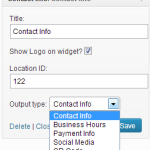 Contact Info Widget Options